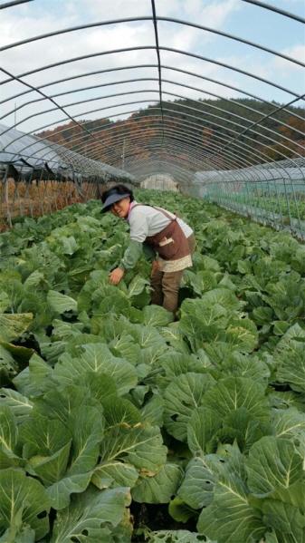 유기농 농장에서