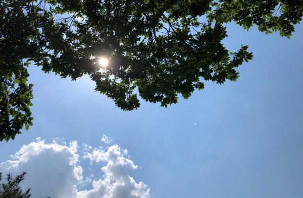 밝게 빛나는 두북의 하늘