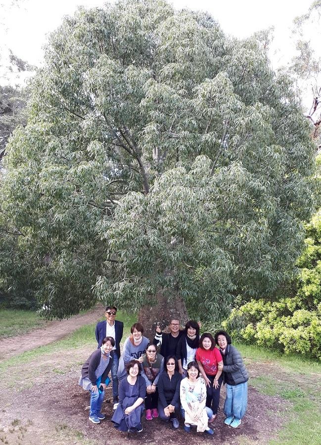 <나눔의장> 수련장 근처 파간(Fagan) 공원에 바오밥 나무 앞에서 한 컷